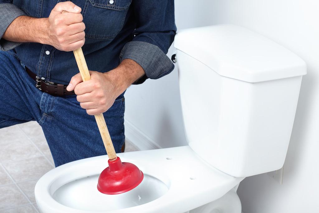 toilet_regurgitation